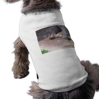 Sleeping Hyena head lying on clay ground picture T-Shirt