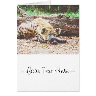 Sleeping Hyena Photograph Card