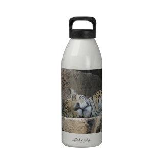 sleeping jaguar.jpg drinking bottles