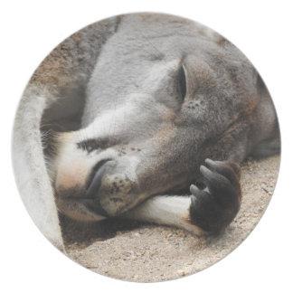 Sleeping Kangaroo Melamine Plate