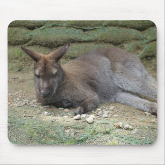 Sleeping Kangaroo Mouse Pad
