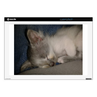 Sleeping Kitten Decals For Laptops