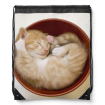 Sleeping Kitten Drawstring Backpack