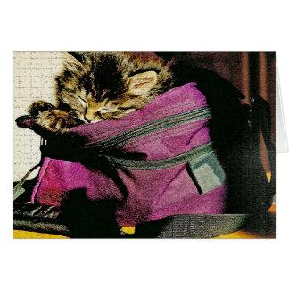 Sleeping Kitten In a Burgundy Purse Greeting Card