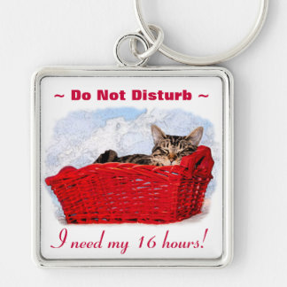 Sleeping Kitten In Bright Red Basket Silver-Colored Square Keychain