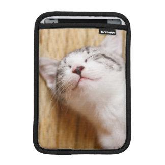 Sleeping Kitten On Tatami Mat iPad Mini Sleeve