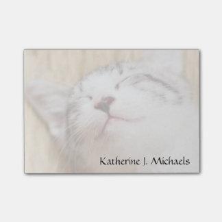 Sleeping Kitten On Tatami Mat Post-it Notes