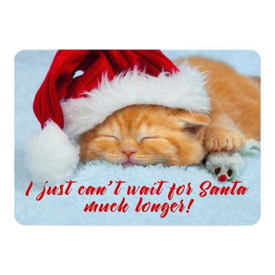 Sleeping Kitten with Santa Hat Two Sided Card
