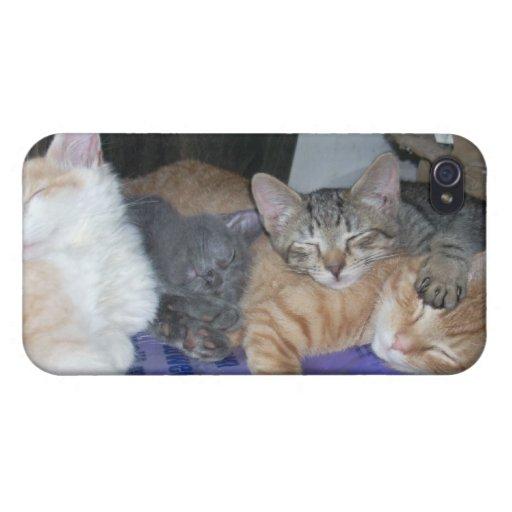 Sleeping Kittens iPhone 4 case