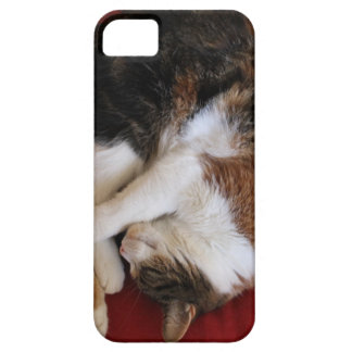 Sleeping Kittty Case For The iPhone 5