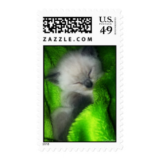Sleeping Kitty1 Postage