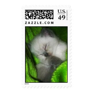 Sleeping Kitty2 Postage