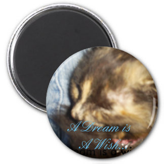 Sleeping kitty 2 inch round magnet