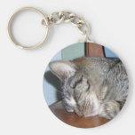 sleeping kitty angel basic round button keychain