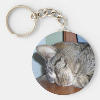 sleeping kitty angel key chains