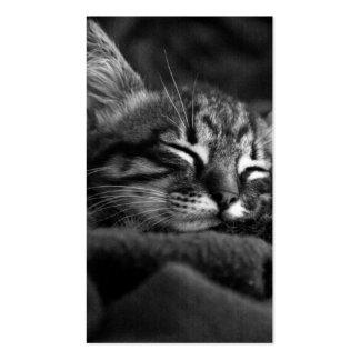 Sleeping kitty business card
