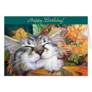 Sleeping Kitty Cat, Maine Coon Kitten, Fall Leaves Card