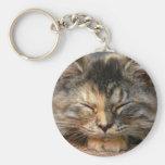 sleeping kitty keychain