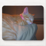 Sleeping Kitty Mouse Pad