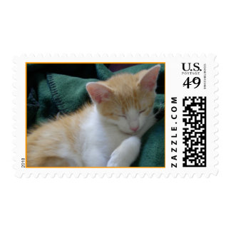 Sleeping kitty postage stamp