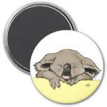 Sleeping koala 3 inch round magnet
