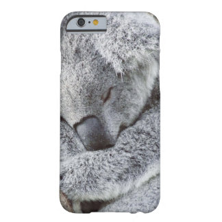 sleeping koala baby barely there iPhone 6 case