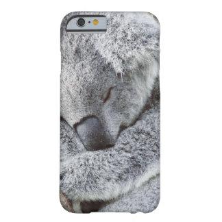sleeping koala baby barely there iPhone 6 case