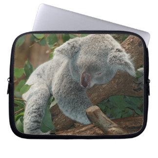 Sleeping Koala Bear Computer Sleeves