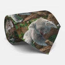 Sleeping Koala Bear Tie