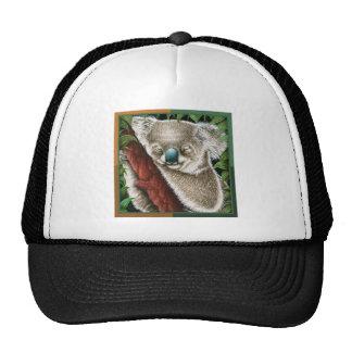 Sleeping Koala Hat