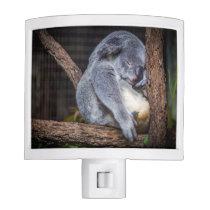 Sleeping Koala Night Light