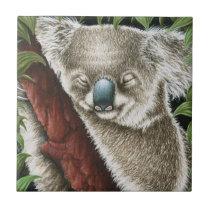 Sleeping Koala Tile
