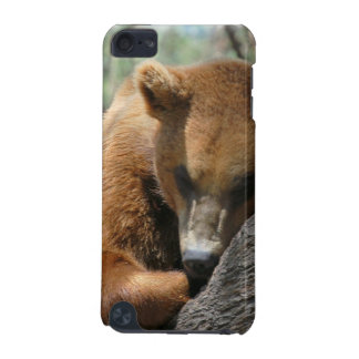 Sleeping Kodiak Bear iTouch Case iPod Touch 5G Covers