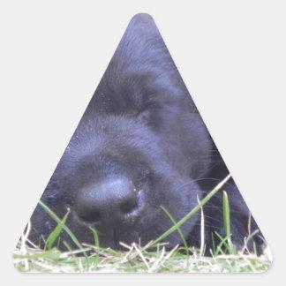 Sleeping Labrador Puppy Triangle Sticker
