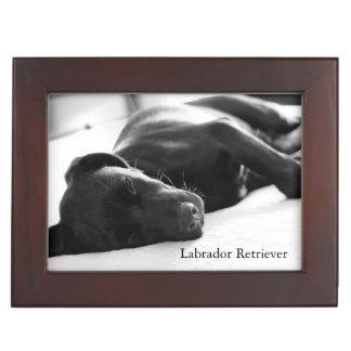 Sleeping Labrador Retriever Pup Memory Boxes