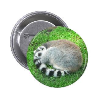 Sleeping Lemur On Grass 2 Inch Round Button