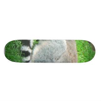 Sleeping Lemur On Grass Skateboard Deck