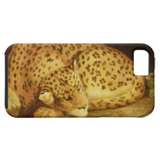 Sleeping Leopard, 1777 (enamel on biscuit iPhone SE/5/5s Case