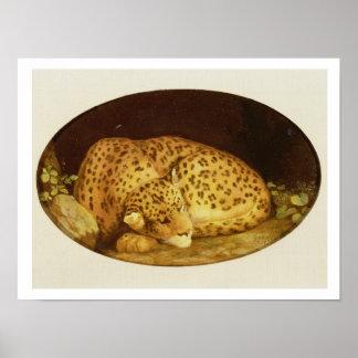 Sleeping Leopard, 1777 (enamel on biscuit Poster