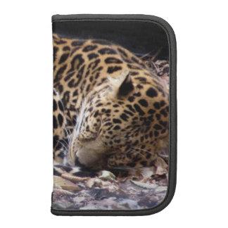 Sleeping Leopard Folio Planners