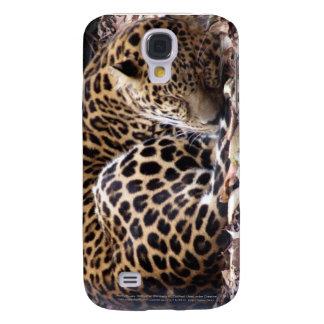 Sleeping Leopard iPhone 3 Case