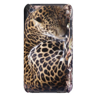 Sleeping Leopard iPod Touch Case