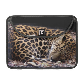 "Sleeping Leopard MacBook Pro 13"" Flap Sleeve"