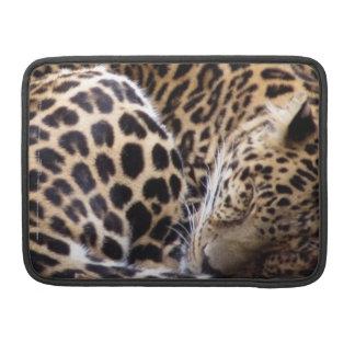 Sleeping Leopard Sleeves For MacBooks