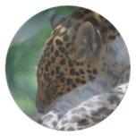 Sleeping Leopard Plate