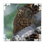 Sleeping Leopard Tile