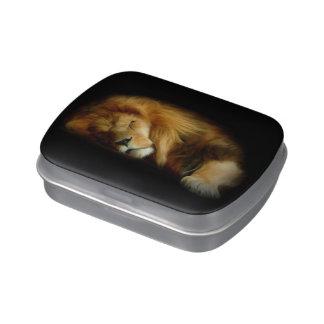 Sleeping Lion Candy Tin