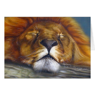 Sleeping Lion Card