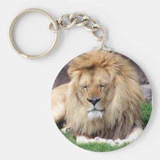Sleeping Lion Key Chain
