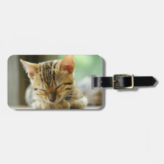 Sleeping Little Baby Kitty Luggage Tag